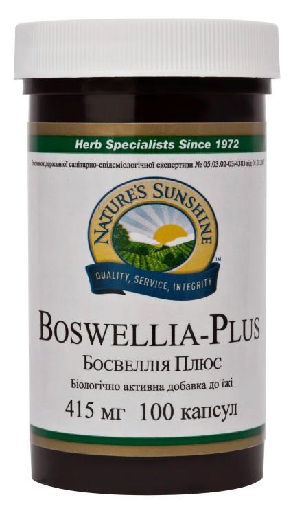Купить Boswellia Plus ( босвелия плюс )