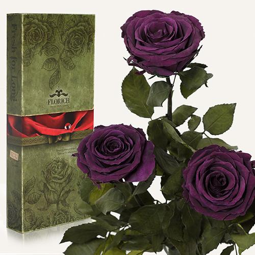 Три долгосвежие розы Florich в подарочной упаковке Фиолетовый аметист 5 карат, короткий стебель