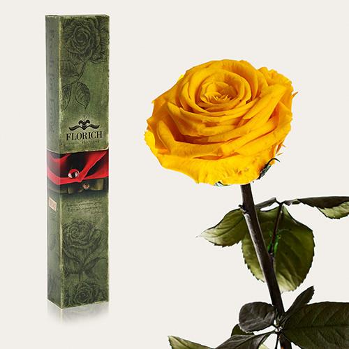 Одна долгосвежая роза Florich в подарочной упаковке.Солнечный цитрин 5 карат, короткий стебель