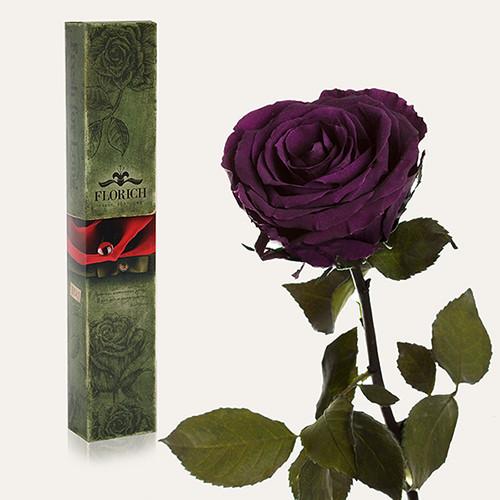 Одна долгосвежая роза Florich в подарочной упаковке. Фиолетовый аметист 5 карат, короткий стебель