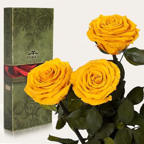 Три долгосвежие розы Florich в подарочной упаковке. Солнечный цитрин 5 карат, короткий стебель
