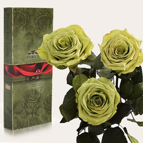 Три долгосвежие розы Florich в подарочной упаковке. Лаймовый Нефрит 5 карат, короткая