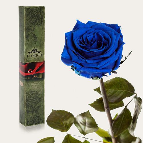 Одна долгосвежая роза Florich в подарочной упаковке.Синий Сапфир 7 карат, средний стебель