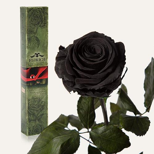 Одна долгосвежая роза Florich в подарочной упаковке. Черный бриллиант 7 карат, короткий стебель
