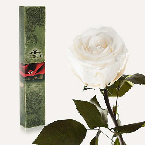 Одна долгосвежая роза Florich в подарочной упаковке. Белый бриллиант 7 карат, короткий стебель