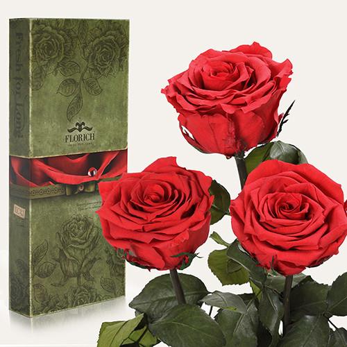 Три долгосвежие розы Florich в подарочной упаковке. Алый рубин 7 карат, короткий стебель