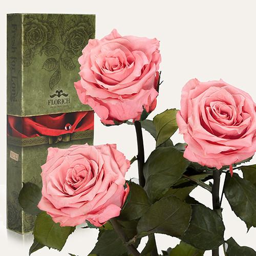 Три долгосвежие розы Florich в подарочной упаковке. Розовый кварц 7 карат, короткий стебель