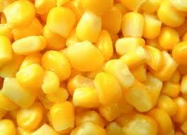 Купить Кукуруза для кормовых потребностей