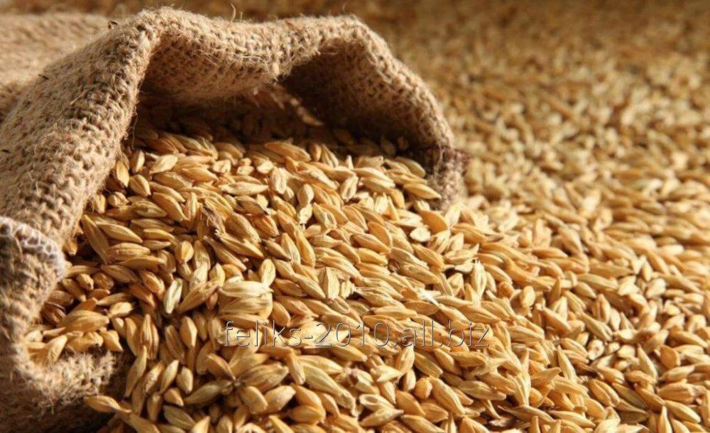 Мука пшеничная 1 сорта