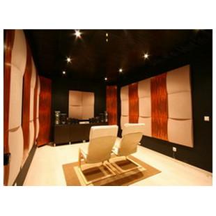 Buy Дизайнерская акустическая панель Vicoustic
