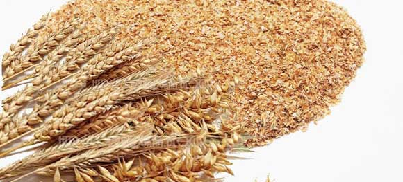 Wheat bran packing of 25 kg polypropylene