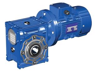 Мотор - редукторы червячные одноступенчатые тип МЧФ 160