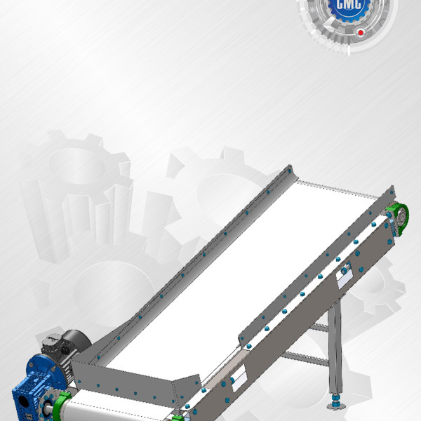Buy Tape conveyor of any modification