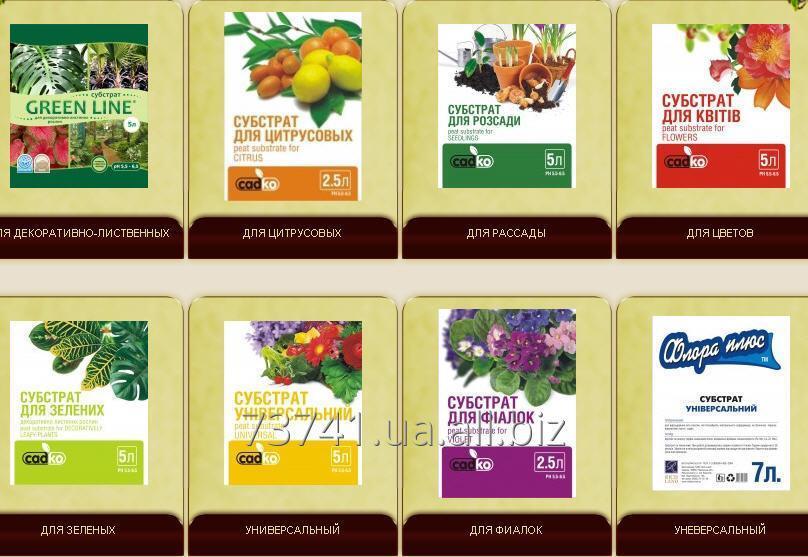 """Купить Торфяные смеси: Хобби--- """"Поліський"""",GREEN LINE,Зимовий сад,Richland,Садко,""""Флора плюс"""",Mikskaar; Профессиональные------Laflora, Rich Land Professional,Richland,Mikskaar,Белторф"""