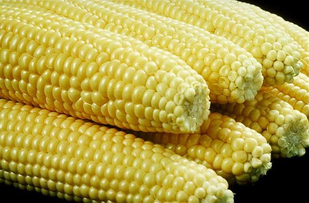 Семена сахарной кукурузы (сверхсахарная)
