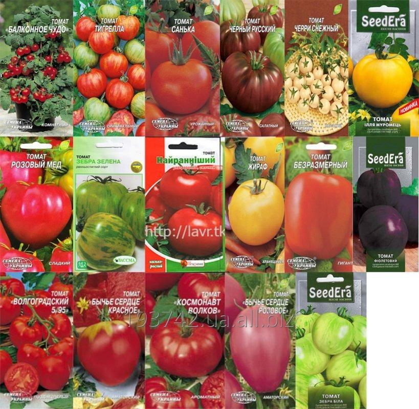 Buy Seeds of vegetables: Tomatoes. Good and unusual grades