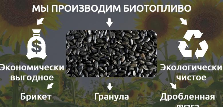Elementi di combustibile