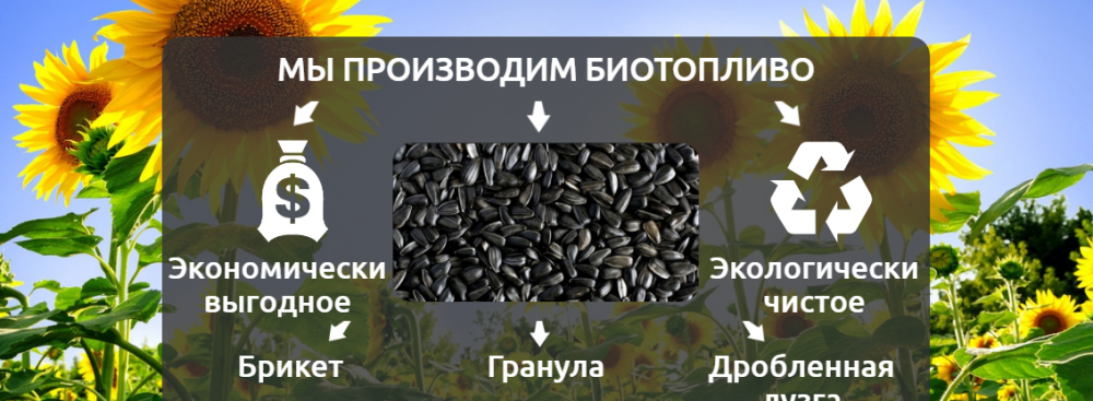 Biofuels from crushed sunflower husk