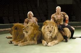 Одежда для цирка