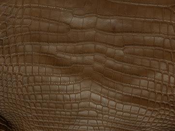 Купить Кожа крокодила натуральная, экзотическая кожа рептилий
