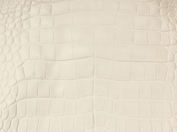 Купить Кожа крокодила белая, натуральная