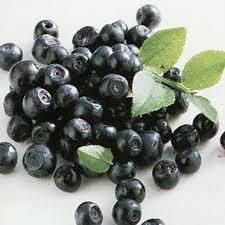 Mrożone Blueberry organiczna, klasa 1