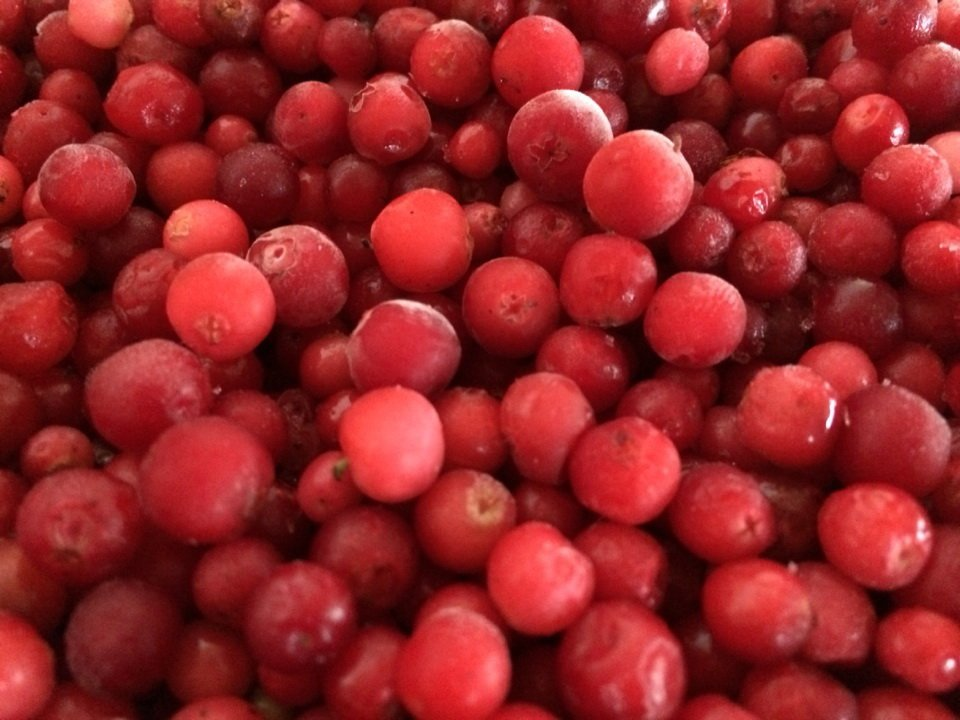Lingonberry Dondurulmuş Organik