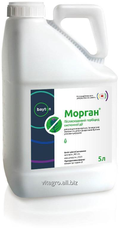 Гербицид Морган® (Калисто+Милагро, Элюмис)