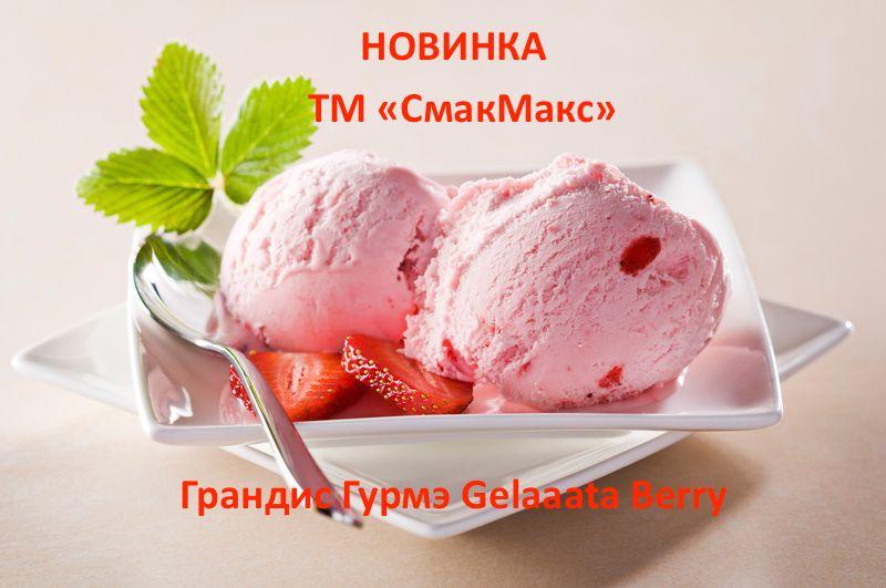 """Купить Сухая смесь """"Грандис Гурмэ Gelaaata Berry"""" (со вкусом Лесных ягод) подходит для производства тайского жареного мороженого"""