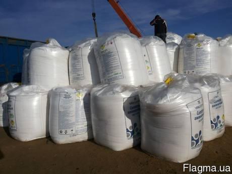 Saltpeter ammoniac