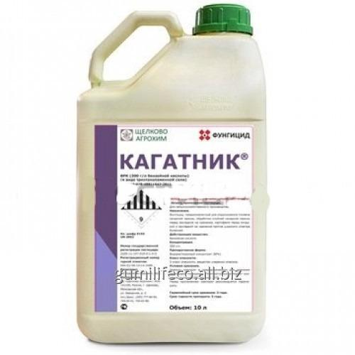 Купить Фунгицид Кагатник, ВРК (Щелково Агрохим Украина)