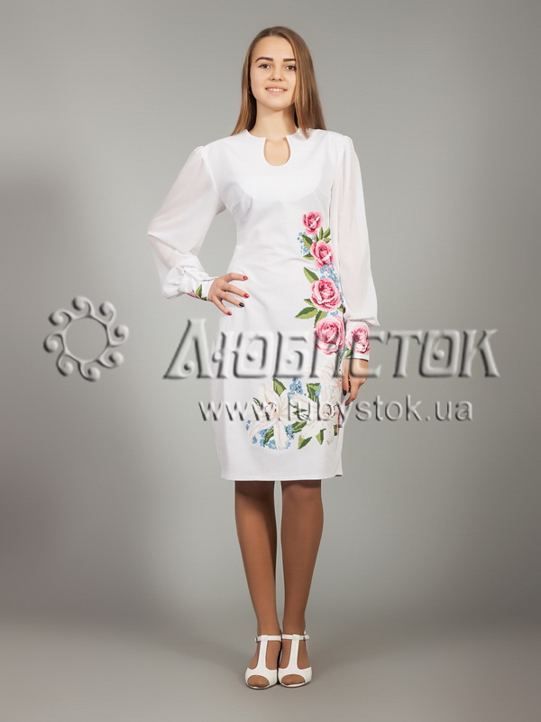 Buy The embroidered ZhPV 19-1 dress