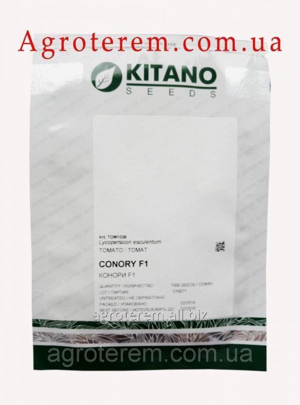 Семена томата Конори F1 (Conory F1) 1000с
