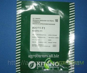 Семена капусты Киото KIOTO F1 1000 с
