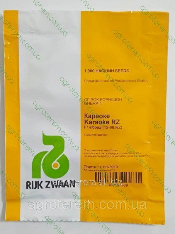 Семена огурца Караоке (Karaoke PZ) F1 1000 с