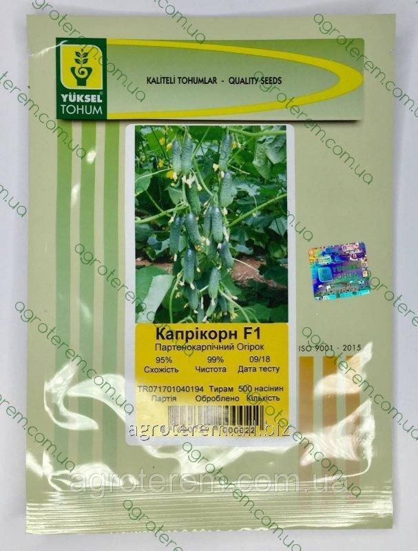 Семена огурца Каприкорн 500 с