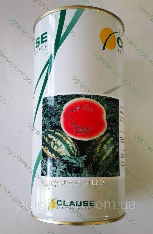 Семена арбуза  Кримсон Свит 0,5 кг (Клоз)