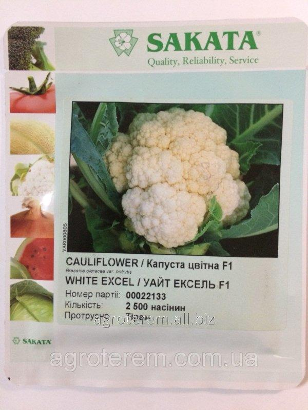 Семена цветной капусты Уайт Эксель WHITE EXCELF1 2500 с