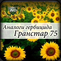 Аналоги гербицида Гранстар и Экспресс