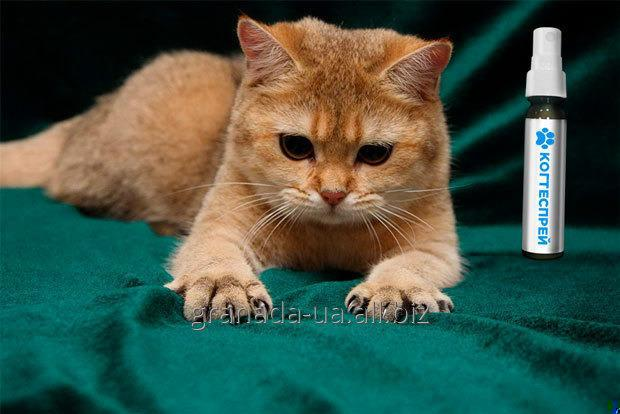 Спрей Когтеспрей для кошек