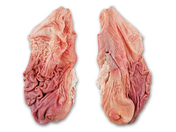 Свиные желудки замороженные (frozen pork stomachs)