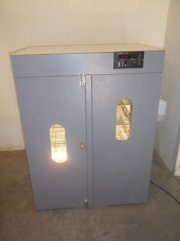 Купить Автоматические бытовые инкубаторы 7 лотков