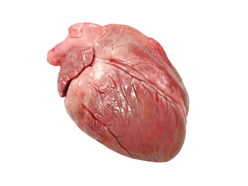 Замороженное свиное сердце (Frozen Pork Heart)