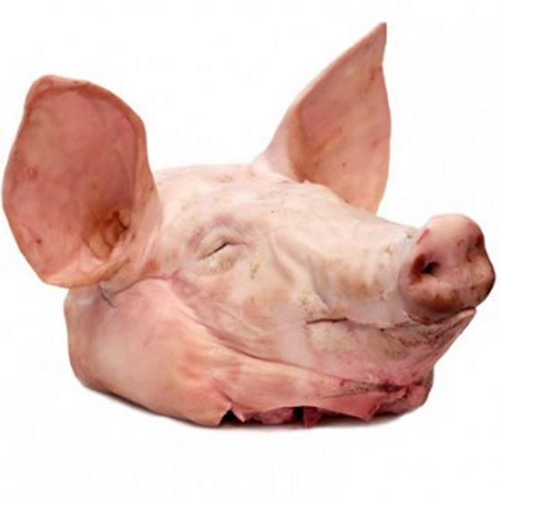 Замороженная свиная голова (Frozen Pork Snout)