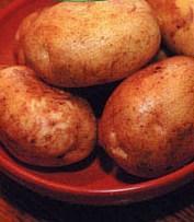 Купить Клетчатка картофельная