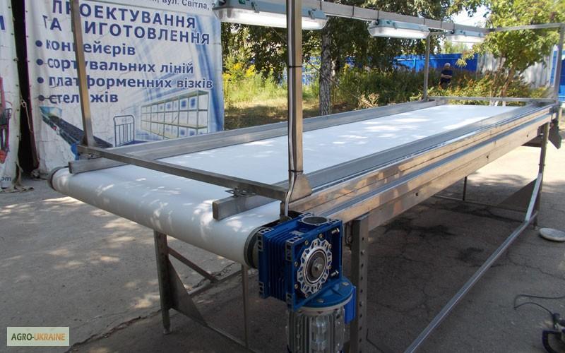 инспекционный транспортер для овощей
