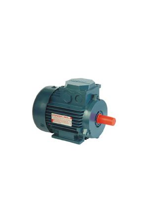 Buy AIR160S2 electric motor