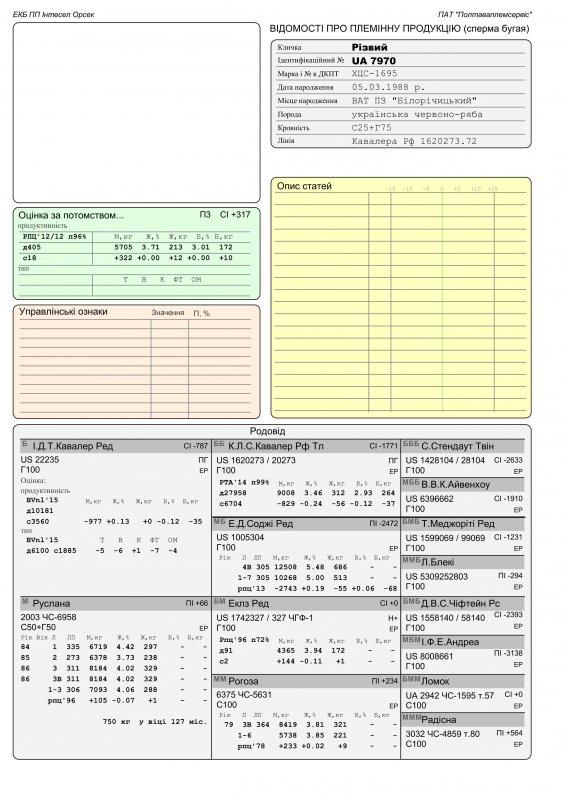 Сперма быка Резвый UA 7970 (красно-пестрый)
