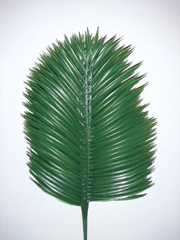 Ветка пальмы большая 55 см