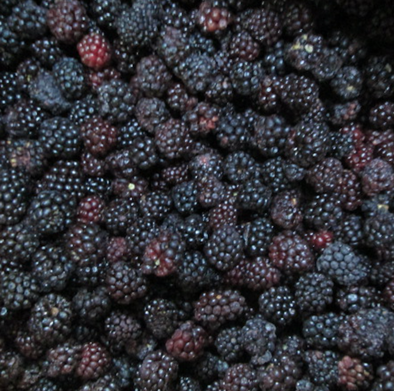 Ежевика замороженная/ IQF Blackberry